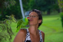 Red-lored Parrot and Lodge host Susan, Costa Rica
