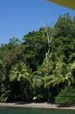 Boat to Saladero Eco-Lodge, Golfo Dulce, Costa Rica