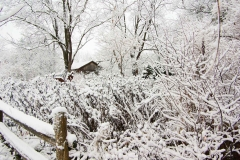 Winter's Barn