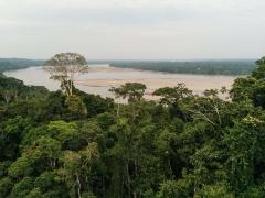 View from Tower - Napo River, Ecuador