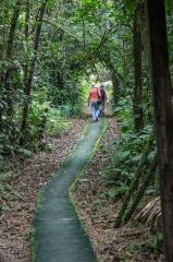 Path to Clay Lick - Napo River, Ecuador