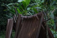 Wood drying at Sani Lodge - Napo River, Ecuador
