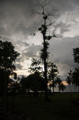 Saladero Eco Lodge,Evening Sky