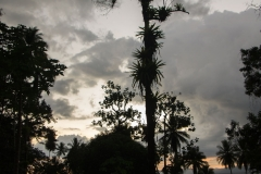 Saladero Eco Lodge,Evening Sky