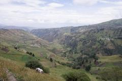 Mountian side Farming